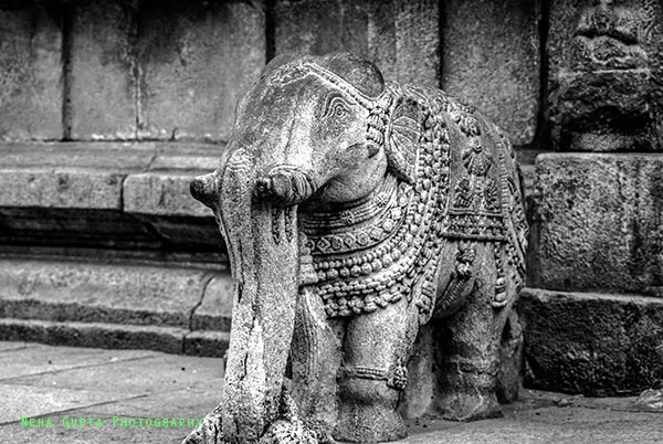 Carved Elephant by Neha Gupta